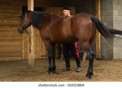 Russian Cossack and a horse resting in the summer field. Day lighting
