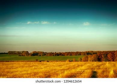 Russian field. Atumn color.
