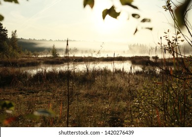 Russian forest. Morning fog. Time for morning fishing. Lonely place.