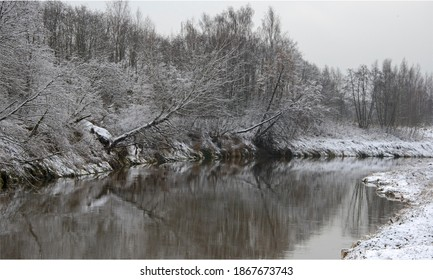 the Russian landscape - the river and the wood in the winter