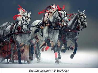 Russian troika galloping in winter