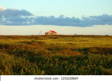 Russian village, Northern region, summer in the Arctic, Northern nature, Naryan-Mar, at sunset, old wooden house stands in the distance
