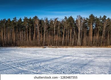 Russian winter in Skolkovo