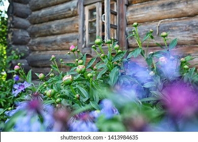 Russian wooden house on a background of flowers