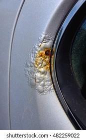 Rust Near a Car Window