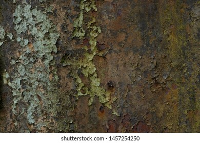 Rusted metal background with peeling paint texture