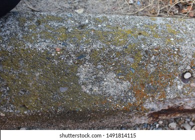 Rusted, mossy, and crumbling concrete parking lot curb barrier closeup