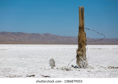 Rusted Out Fence Post in the Salt Deposits of Soda Lake