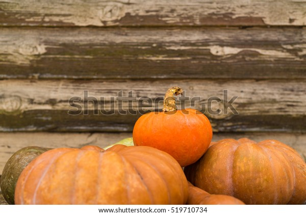 Rustic autumn still life with pumpkins on old wood with vintage background.