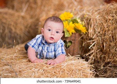 Rustic baby child boy posing on mountain of village dry straw wearing blue jeans and t-shirt happy smiling.