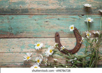 Rustic background with rusty horseshoe and daisies on old wooden boards. Copy space. Top view.