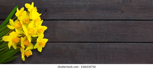 Rustic background with Yellow daffodils flowers. Template with bouquet of daffodils flowers on dark brown wooden background. Wide Angle Spring Mockup Web banner With Copy Space. Top view, Flat lay