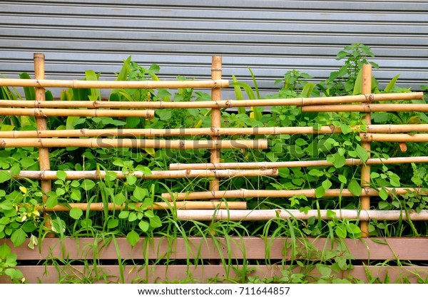 Rustic Bamboo Fencing Front Plants Corrugated Stock Photo