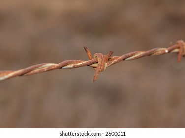 Rustic barb wire