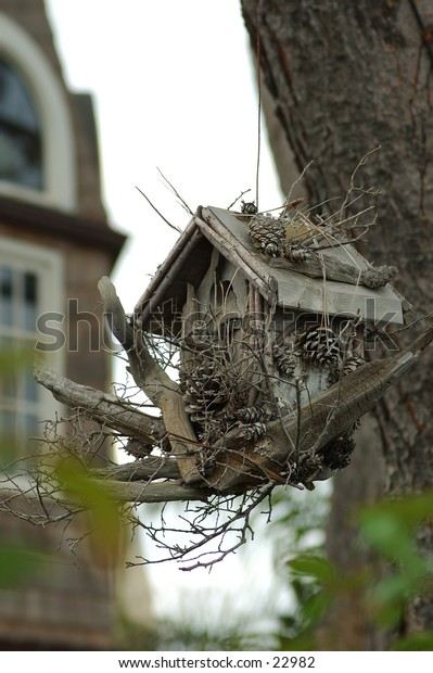 Rustic birdhouse hanging in a tree