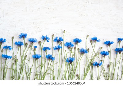 Rustic Border of Blue Cornflower on grunge white background. Beautiful Nature Summer Flowers background with copy space. Top view. Flat lay. Template for Greeting card for mother's day, birthday