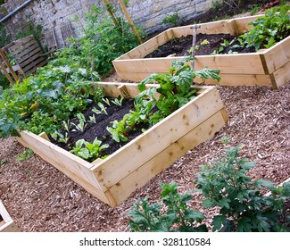 Rustic Country Vegetable & Flower Garden with Raised Beds.