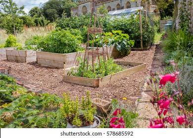 Rustic Countryside Raised Bed Vegetable & Flower Garden