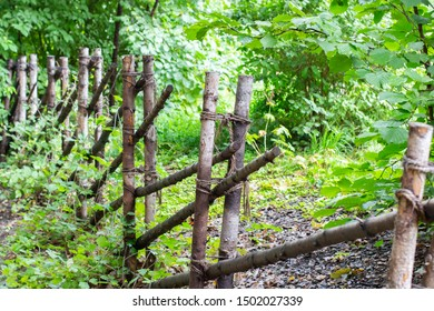 A rustic fence made of thin tree trunks fastened with a rope, a picket fence, a wooden fence in the garden of the garden. Background natural wallpaper
