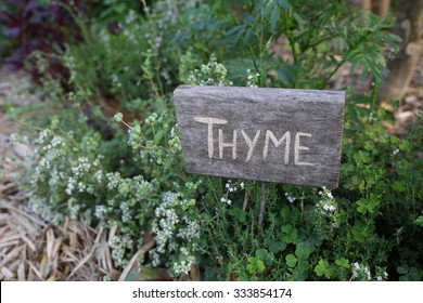 Rustic Herb markers, Thyme