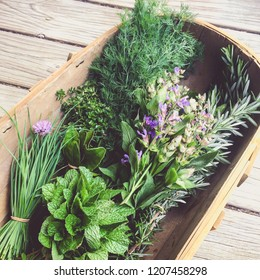 Rustic image of fresh organic garden herbs: chives, mint, kaffir lime leaves, thyme, flowering sage, rosemary, dill