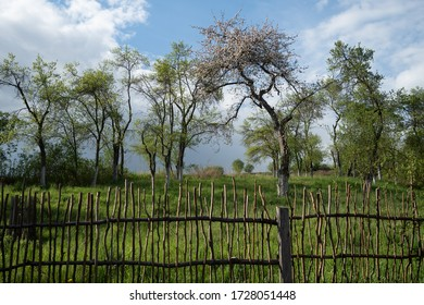 Rustic landscape with fence in the Polish village with green trees, meadow an a blue sky with white clouds in the background