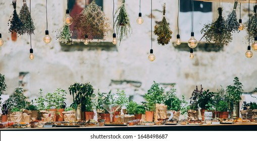 Rustic light bulb garden lights and greenery. Outdoor rustic venue with food and spices.