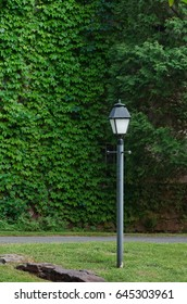 Rustic Light Post With Ivy Background