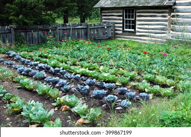 Rustic log cabin with fenced vegetable garden
