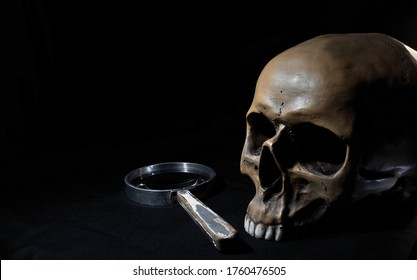 A rustic magnifying glass with a wooden handle and a realistic human prop skull with a missing lower jawbone photographed on a dark background.