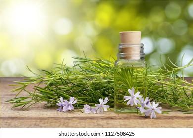 Rustic oil on wood table
