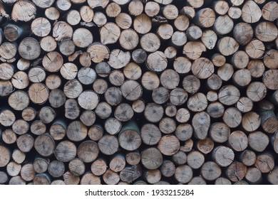 Rustic old cut natural wood