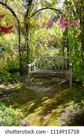 Rustic old wooden garden bench covered in lichen beneath rose arbor in sunlit garden setting - vertical format