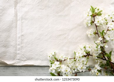 Rustic spring background with blooming branch