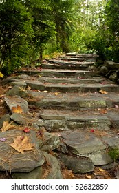 Rustic stairs made of stone in an autumn scene with trees and fallen leaves.