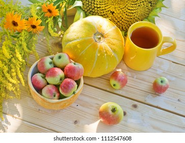Rustic still life with ripe apples, pumpkin and sunflower.