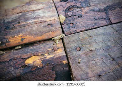 rustic texture background of riveted woods