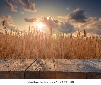 Rustic textured wooden board table in front of summer beautiful rye field in sunset light. Ready for product placement template.