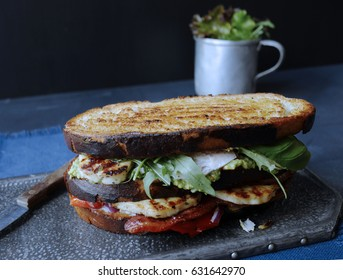 Rustic Toasted Sandwich