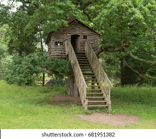 Rustic Treehouse in an Oak Tree (Quercus) within Parkland at Plas Newydd by the Menai Strait on the Isle of Anglesy, Wales, UK
