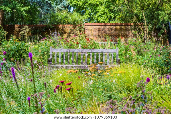 Rustic wooden Bench among a field of wildflowers taken in a walled English Garden