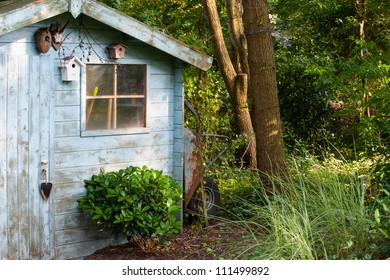 rustic wooden blue old garden shed in countryside