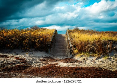 A rustic wooden footbridge over the sand dunes leading to a seaweed filled beach against a cloudy sky,