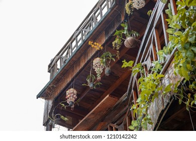 Rustic wooden house with coco shell flowerpot. Balcony of native style cottage in tropical island. Ecological hotel with floral decoration. Outdoor flowerpots with tropical flowers. Green lifestyle