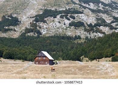 Rustical wooden House near Hill in Zhablyak , Montenegro in summer