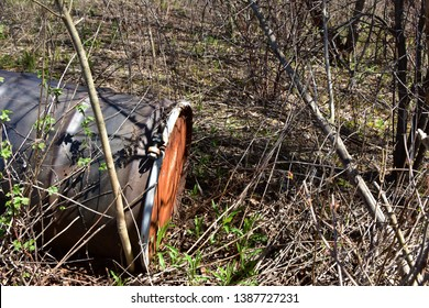 Rusting and rotting 55 gallon steel chemical drum in an wooded area.