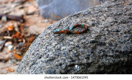 a rusty artefact on a rock in the beach