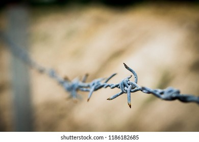Rusty Barbed wire with blur and soft focus