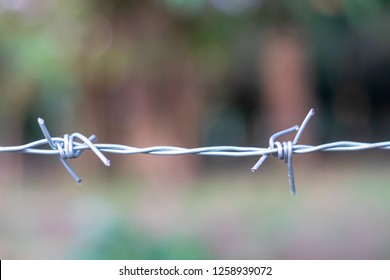 Rusty Barbed wire with blur and soft focus in safe zone