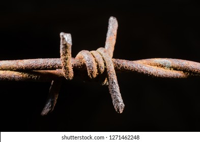 rusty barbed wire (low key)